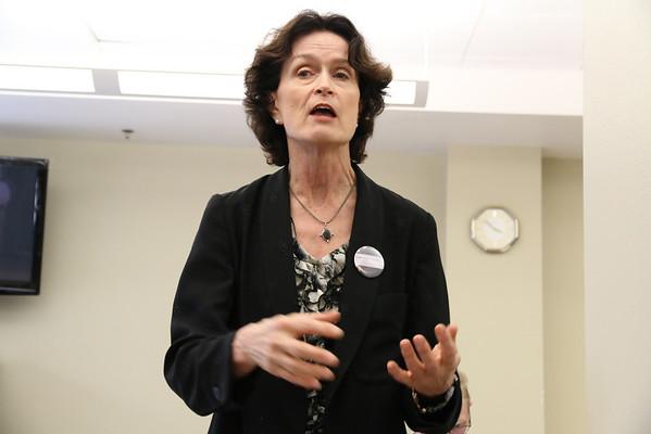 Carol Kingsley, candidate for San Francisco Superior Court Judge, 2014